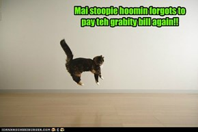 Mai stoopie hoomin forgots to pay teh grabity bill again!!