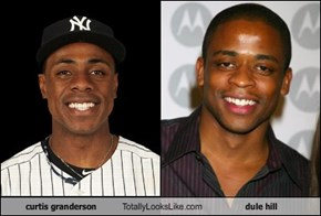 curtis granderson Totally Looks Like dule hill
