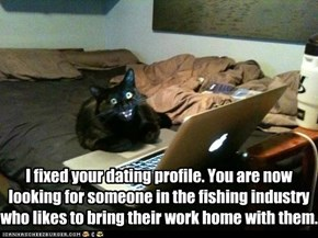 Basement Cat's Matchmaking Service