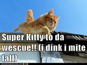 Super Kitty to da wescue!! (i dink i mite fall)