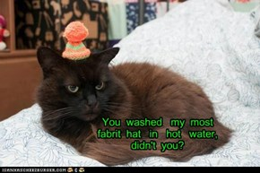 You  washed   my  most   fabrit  hat   in   hot   water,   didn't  you?