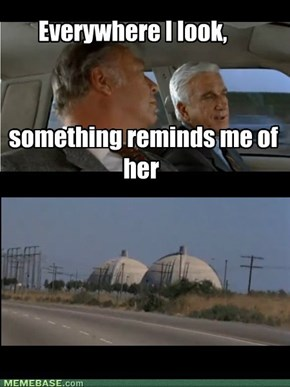 In Honor of Leslie Nielsen (1926-2010)