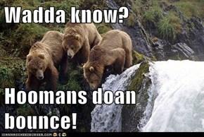 Wadda know?  Hoomans doan bounce!