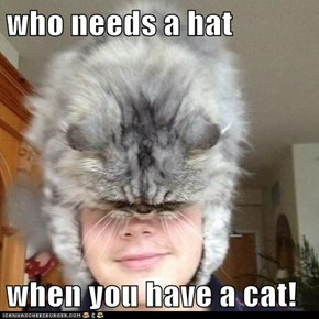 who needs a hat  when you have a cat!