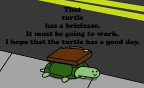 Good For You, Turtle