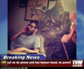 Breaking News - cat on da phone and haz human hand, no pawz!