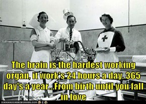 The brain is the hardest working organ, it work's 24 hours a day, 365 day's a year...From birth until you fall in love