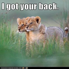 I got your back.