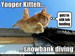 Yooper Kitteh...