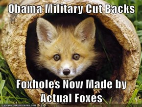 Obama Military Cut Backs  Foxholes Now Made by Actual Foxes