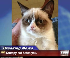 Breaking News - Grumpy cat hates you.
