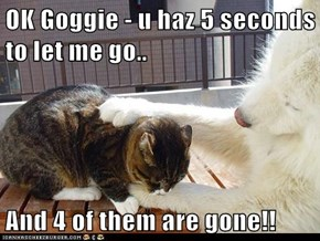 OK Goggie - u haz 5 seconds to let me go..  And 4 of them are gone!!