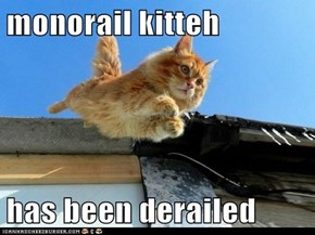 monorail kitteh  has been derailed