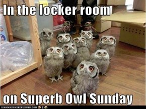 In the locker room  on Superb Owl Sunday