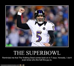 THE SUPERBOWL