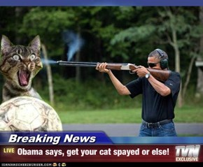 Breaking News - Obama says, get your cat spayed or else!