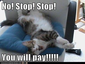 No! Stop! Stop!  You will pay!!!!!