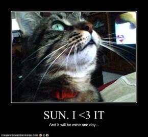 SUN. I <3 IT