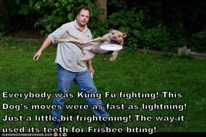 Everybody was Kung Fu fighting! This Dog's moves were as fast as lightning! Just a little bit frightening! The way it used its teeth for Frisbee biting!