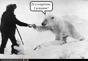 Dr.Livingstone,  I presume?