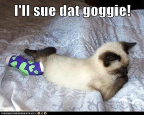 I'll sue dat goggie!