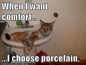 When I want comfort...  ...I choose porcelain.