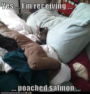 Yes ... I'm receiving ...   ... poached salmon ...