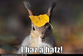 I haz a hatz!