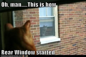 Oh, man.....This is how  Rear Window started