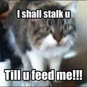 I shall stalk u