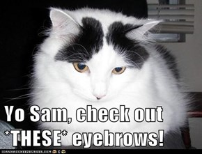 Yo Sam, check out *THESE* eyebrows!