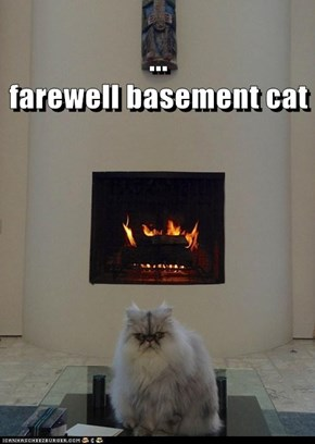 ...                                                                                                                                              farewell basement cat