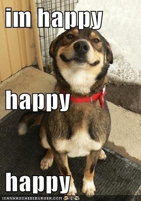 im happy happy happy
