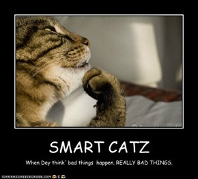 SMART CATZ