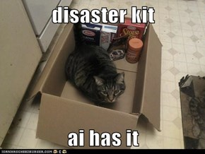 disaster kit  ai has it