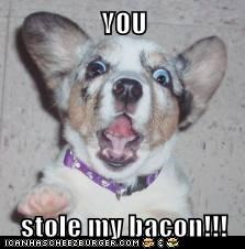 YOU  stole my bacon!!!