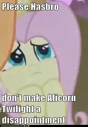 Please Hasbro  don't make Alicorn Twilight a disappointment