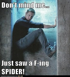 Don't mind me...  Just saw a F-ing SPIDER!