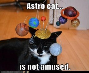Astro cat...  is not amused.