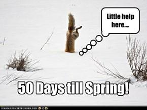50 Days till Spring!
