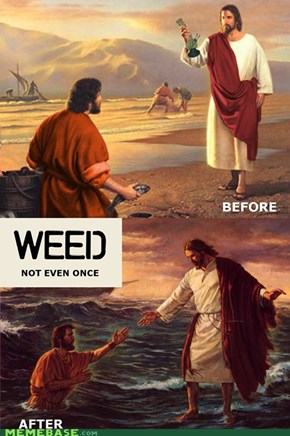 Weed not even once.