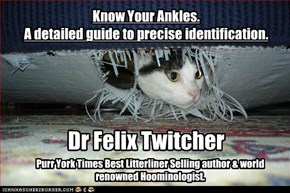 Know Your Ankles. A detailed guide to precise identification.