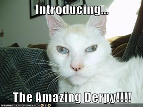 Introducing...  The Amazing Derpy!!!!