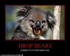 DROP BEARS