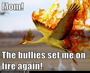 Mom!  The bullies set me on fire again!