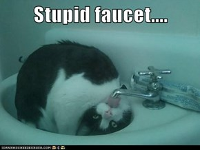 Stupid faucet....