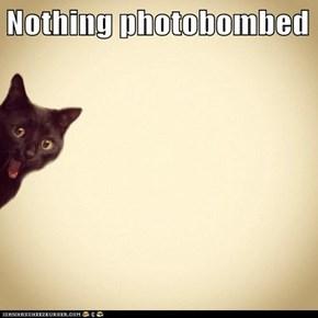 Nothing photobombed