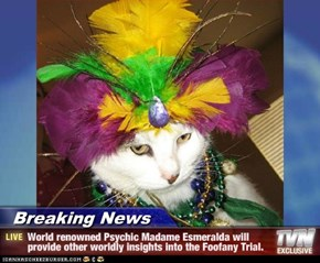 Breaking News - World renowned Psychic Madame Esmeralda will provide other worldly insights into the Foofany Trial.