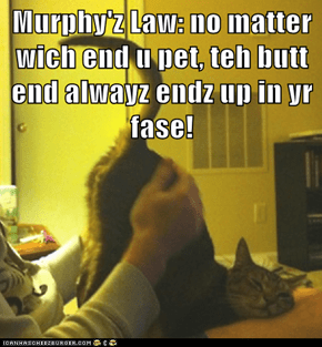 Murphy'z Law: no matter wich end u pet, teh butt end alwayz endz up in yr fase!