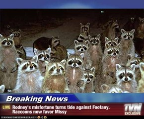 Breaking News - Rodney's misfortune turns tide against Foofany. Raccoons now favor Missy